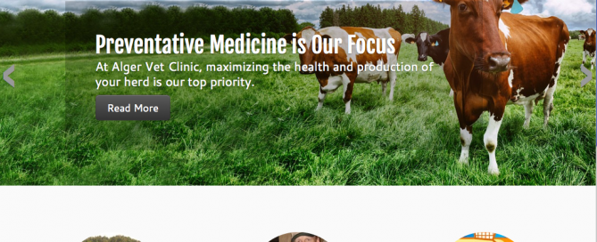 This thumbnail is the homepage website for Alger Vet Clinic which Charene Creative designed.