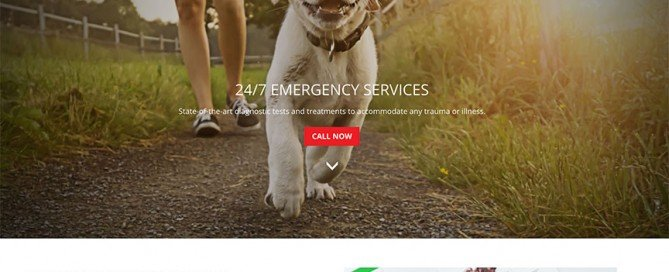 Metropolitan Vet Hospital website